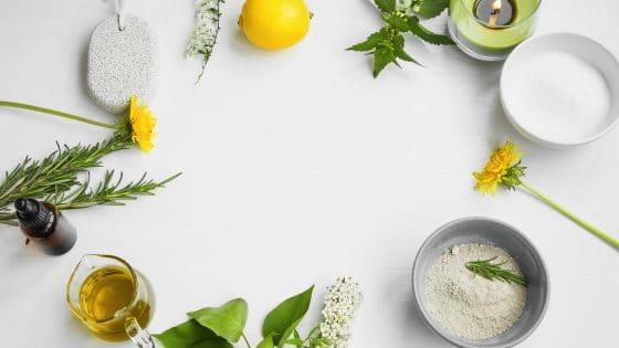 ingredienser i hudpleje
