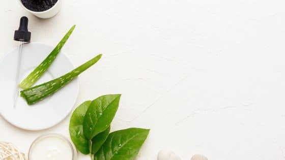 Rosacea behandling med Aloe Vera